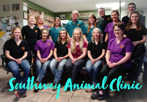 our team southway animal clinic lewiston id southway animal